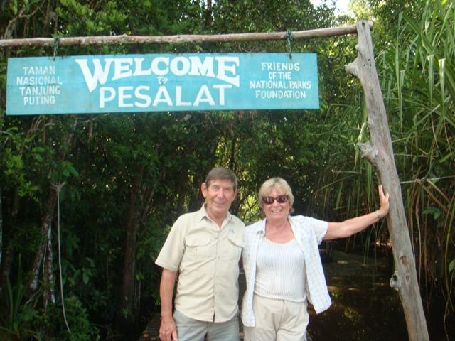 Pesalat, Tanjung Puting.