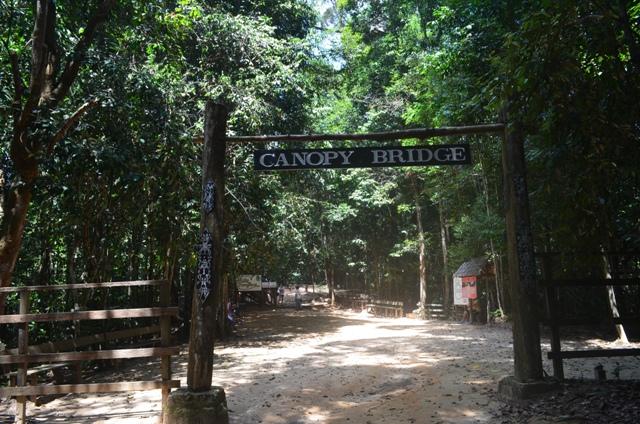 Bangkirai Hill