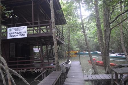 Mangrove center, www.kalimantantourguide.com