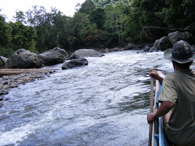 BETUNG KERIHUN NATIONAL PARK