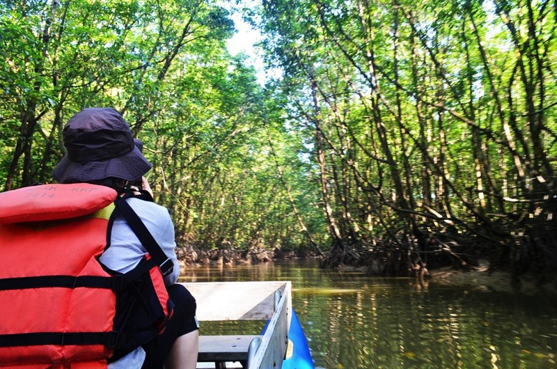 mangrove center-www.kalimantantourguide (9)
